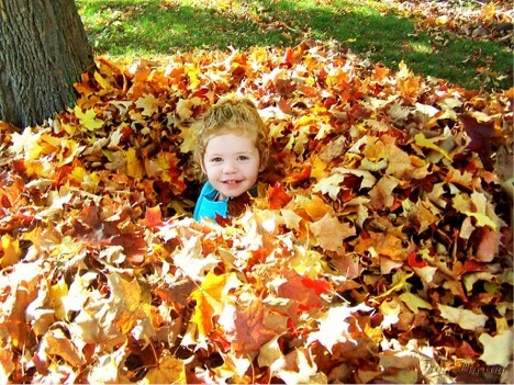 Autumn_image